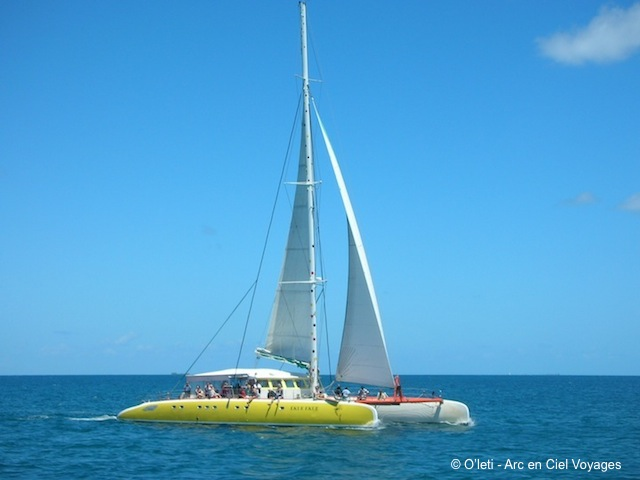 Excursion catamaran - sailing daytrip